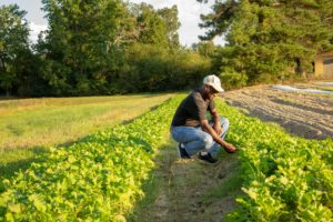 Cover photo for NC Farm School : Keeping It in the Family